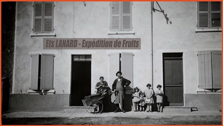 Lanard fruits 1