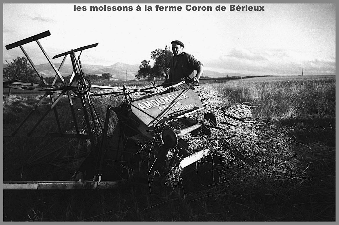 Moisson coron 3