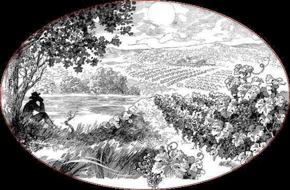 Vigneron
